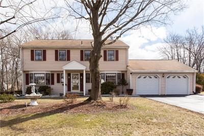 Wethersfield Single Family Home For Sale: 110 Back Lane