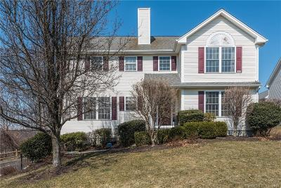 Danbury Single Family Home For Sale: 45 Pocono Lane #10
