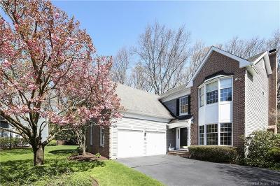Wilton Single Family Home For Sale: 28 Wilton Hunt Road #28