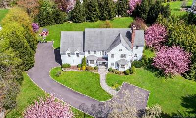Darien Single Family Home For Sale: 244 Hollow Tree Ridge Road