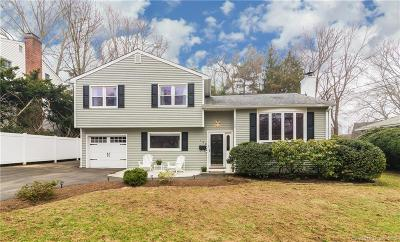 Stamford Single Family Home For Sale: 196 Idlewood Drive