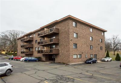 New Britain Condo/Townhouse Show: 45 Park Place #407