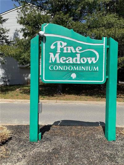 Meriden Condo/Townhouse Show: 1001 Old Colony Road #7-8