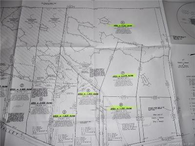 Windham County Residential Lots & Land For Sale: 201 Valley View Road