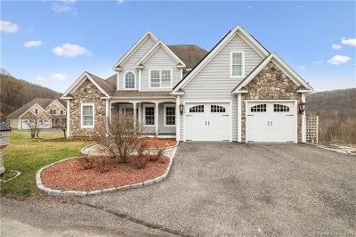 New Milford Single Family Home For Sale: 3 Hardwood Circle #3