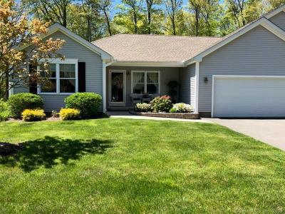 East Windsor Single Family Home For Sale: 7 Mallard Court #7