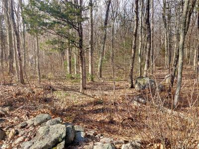 Brooklyn Residential Lots & Land For Sale: Tatnic Hill Road