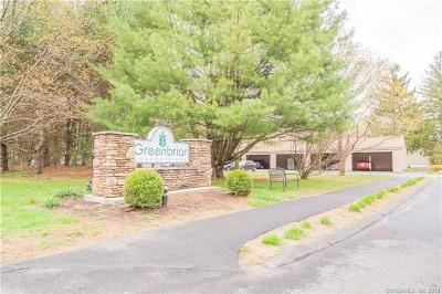 Hartford County Condo/Townhouse For Sale: 1220 Farmington Avenue #C