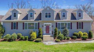 Brookfield Single Family Home For Sale: 35 Clearview Drive