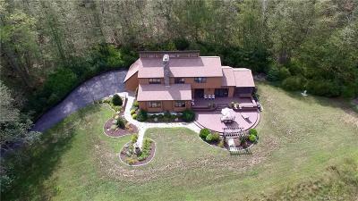 Ellington Single Family Home For Sale: 60 Webster Road