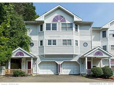 New Haven Condo/Townhouse For Sale: 67 Quinnipiac Avenue #67