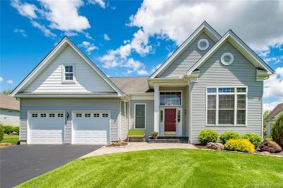 Bloomfield Single Family Home For Sale: 81 Vista Way