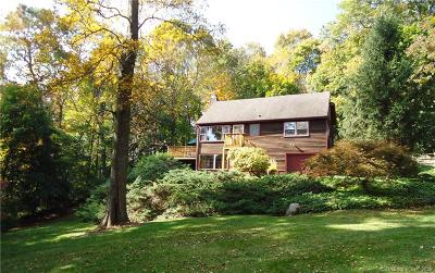 Ridgefield Single Family Home For Sale: 25 Split Level Road