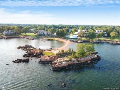 Branford Condo/Townhouse For Sale: 169 Turtle Bay Drive #169