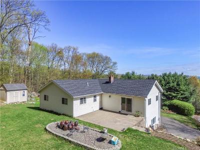 Bristol Single Family Home For Sale: 663 Wolcott Street