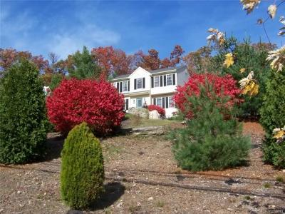 Simsbury Single Family Home For Sale: 50 Hoskins Road