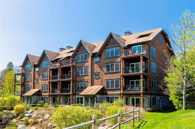 Danbury Condo/Townhouse For Sale: 16 Hayestown Road #A401