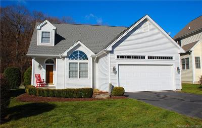 Shelton Single Family Home For Sale: 9 Waterford Lane