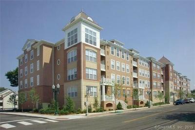 Stamford Condo/Townhouse For Sale: 25 Adams Avenue #211