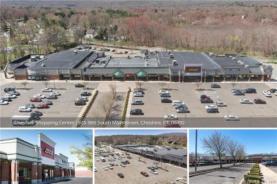 Cheshire Commercial For Sale: 925-969 South Main Street