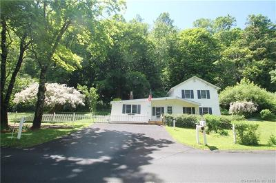 Danbury Single Family Home For Sale: 17 Mountainville Road