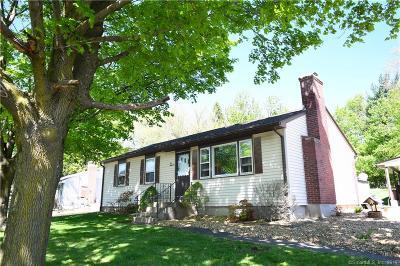 Bristol Single Family Home For Sale: 1018 Stafford Avenue