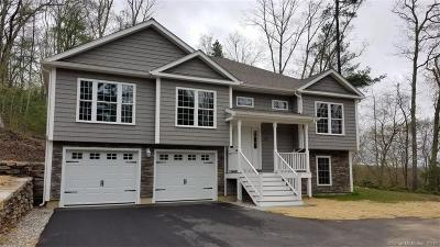 Plainfield, Voluntown, Griswold, Sterling, Killingly Single Family Home For Sale: 40 Airport Road