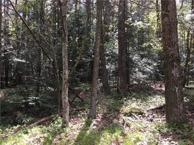 Residential Lots & Land For Sale: 114 Conklin Road