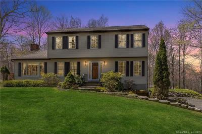 NEW MILFORD Single Family Home For Sale: 19 Old Parkwood Road