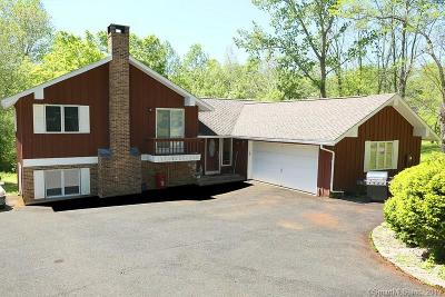 New Britain Single Family Home For Sale: 28 Weigands Drive