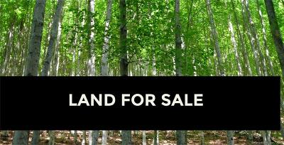 Woodstock Residential Lots & Land For Sale: 00 Senexet Road