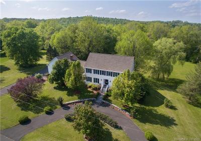 Ridgefield Single Family Home For Sale: 213 Keeler Drive