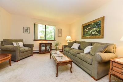 Barkhamsted Single Family Home For Sale: 22 Robin Drive