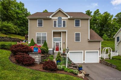 West Hartford Single Family Home For Sale: 26 Chestnut Hill Road