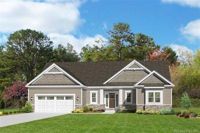 New Hartford Single Family Home For Sale: 906 Torringford East Street #Lot 3