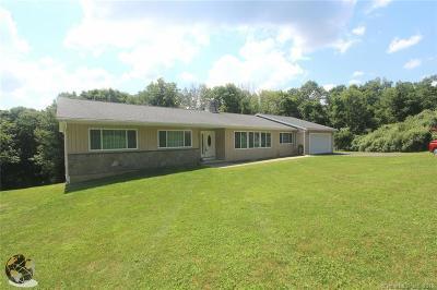 Ridgefield Single Family Home For Sale: 21 Briar Ridge Road