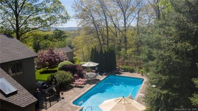 Southington Single Family Home For Sale: 87 North Star Drive