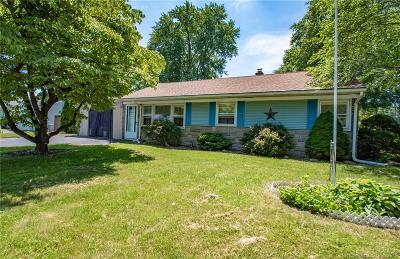 Plainville Single Family Home For Sale: 52 Plum Tree Road