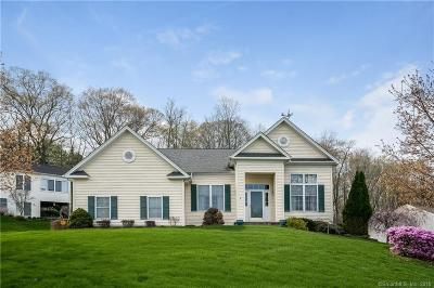 Bloomfield Single Family Home For Sale: 24 Vista Way