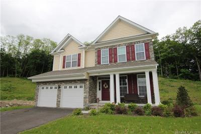 Bethel Single Family Home For Sale: 23 South Crossing Way