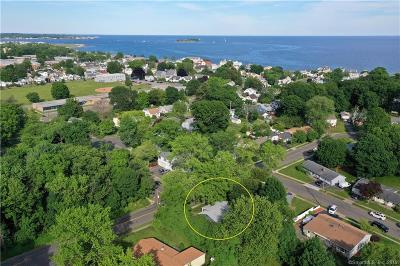 Milford Single Family Home For Sale: 51 Seaflower Road