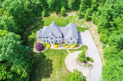 Tolland Single Family Home For Sale: 45 Birch Hill Drive