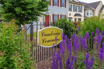 Middletown Condo/Townhouse Show: 204 Cambridge Commons #204