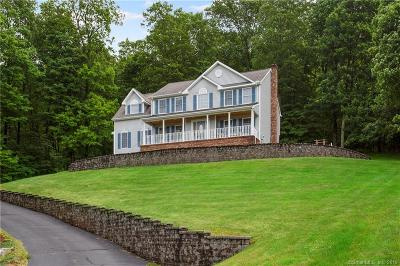 Southington Single Family Home For Sale: 132 Village Gate Drive