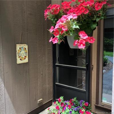 Avon Condo/Townhouse For Sale: 5 Canterbury Lane #5