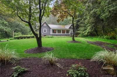 New Milford Single Family Home For Sale: 17 Beach Drive