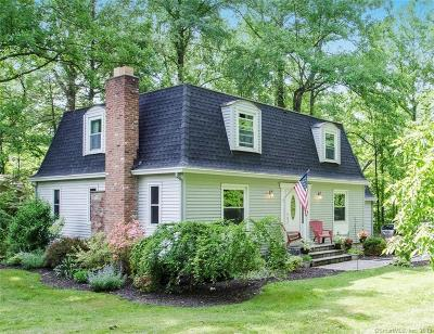 New Milford Single Family Home For Sale: 440 Candlewood Lake Road North
