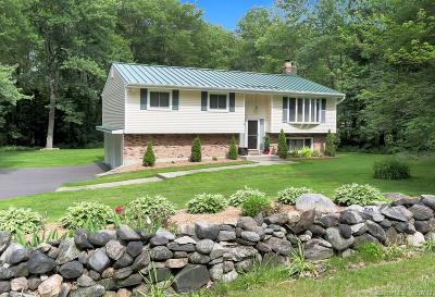 Litchfield Single Family Home For Sale: 96 Campville Road