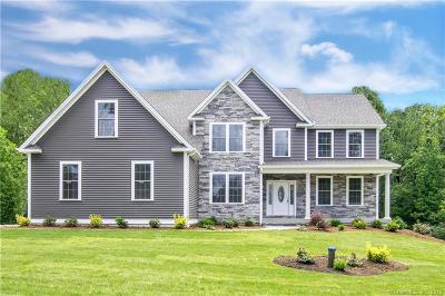 Bethel Single Family Home For Sale: 33 Starr Lane