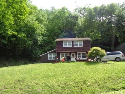 New Milford Single Family Home For Sale: 1 Little Quarry Lane